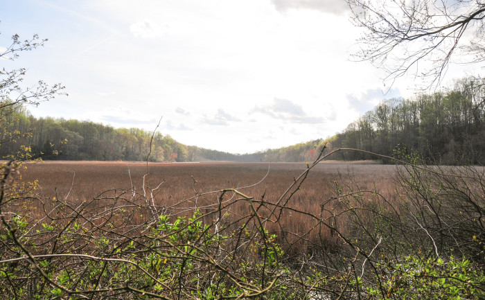 3) Parkers Creek, Calvert County