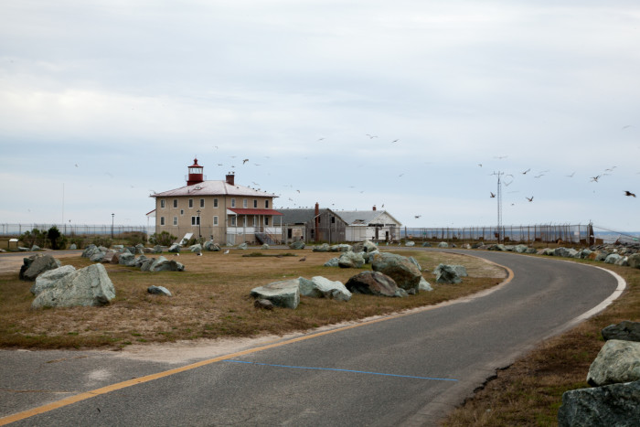 5) Point Lookout Lighthouse, Scotland