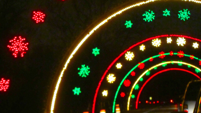 1) Wayne County Lightfest, Westland