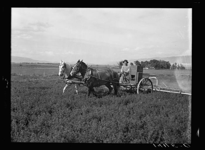 2. Sanpete County, 1940