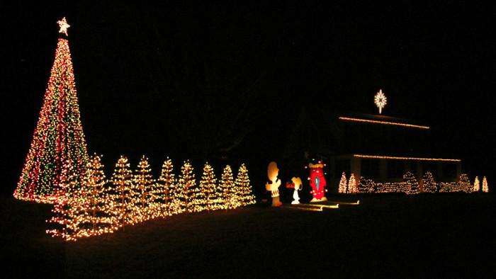 3. Wilton Lights, Wilton