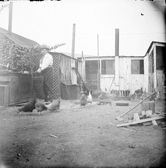 "4. ""Man getting water from pump near chicken coop."""