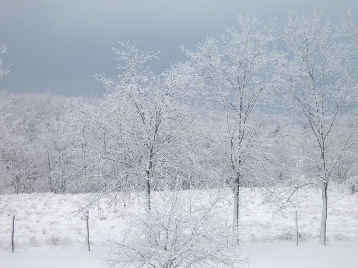 10. It may be cold, but West Virginia is so beautiful in the snow.