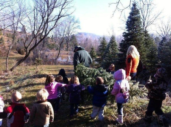 6. There's nothing better than picking out and chopping your own Christmas tree.