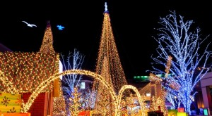 Here Are The 8 Best Christmas Displays In Georgia. They're Magical.
