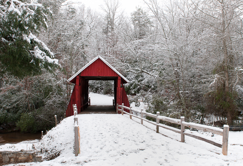 13 Times Snow Made South Carolina Beautiful
