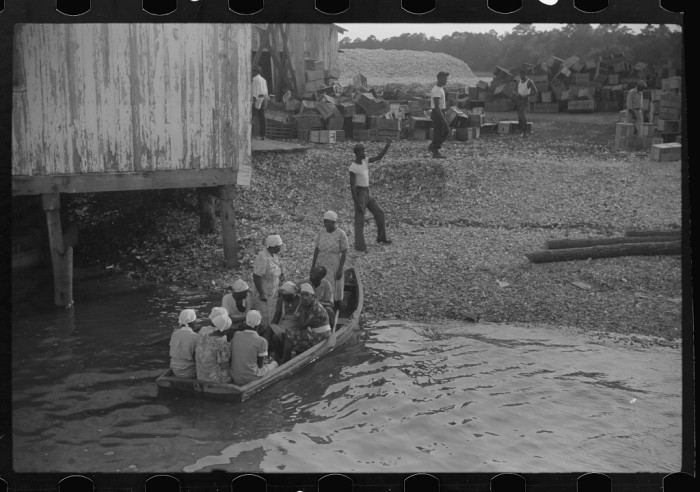 7. Cannery workers on St. Helena Island on their way home from work.