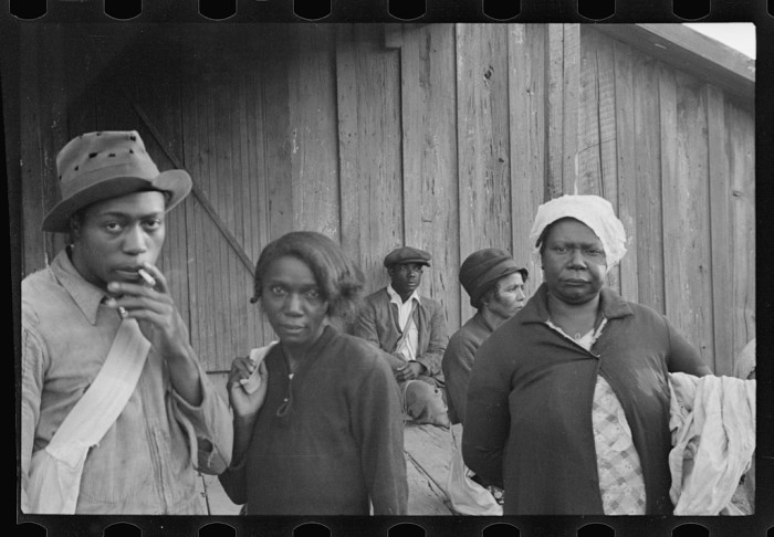 3. Cotton Field Workers