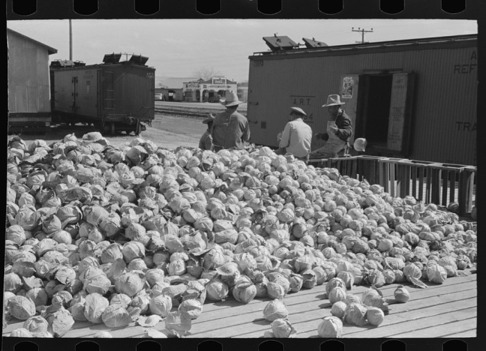 19. Everyone pitched in to make sure food shortage was never a reality.