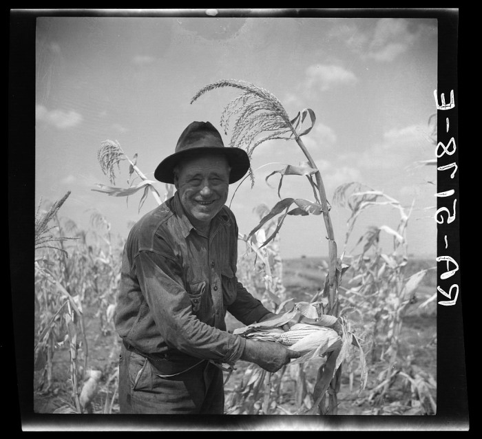 6. This sharecropper was elated that his corn turned out so well! He hoped to repay his loan by the end of 1936, and by the looks of this, he would do that and then some.