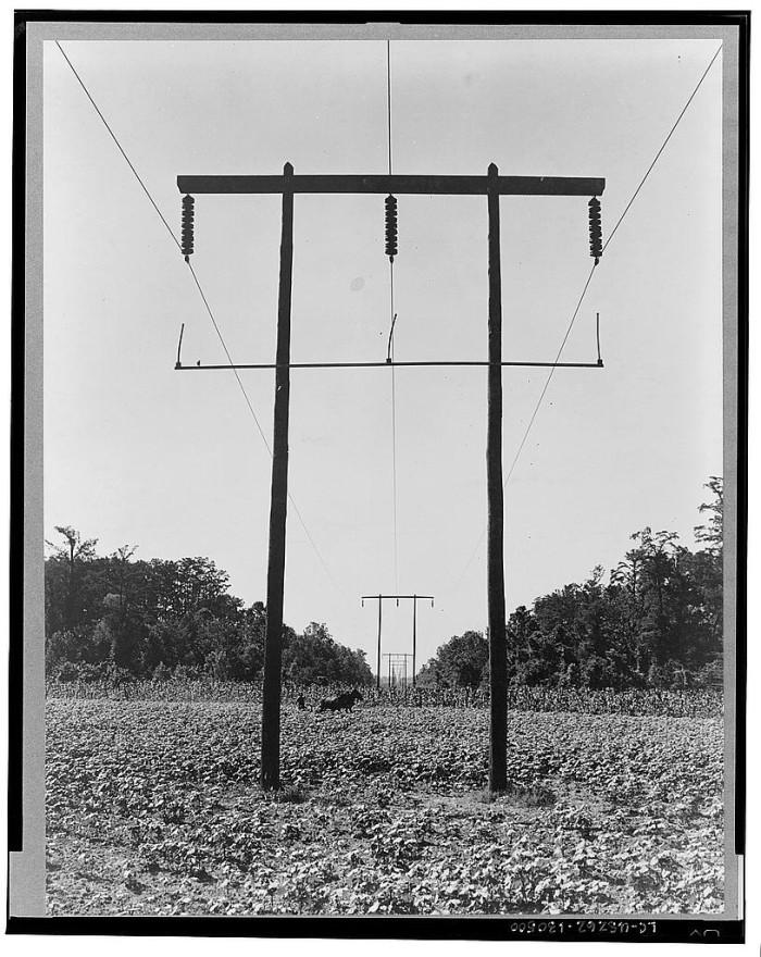 7. Rural Electrification