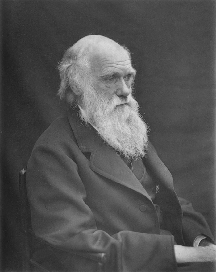 7. A Harpers Ferry man sued the school system because his daughter was taught evolution.