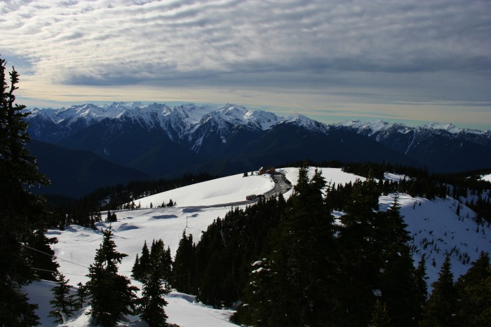 4. Hurricane Hill, Olympic National Park