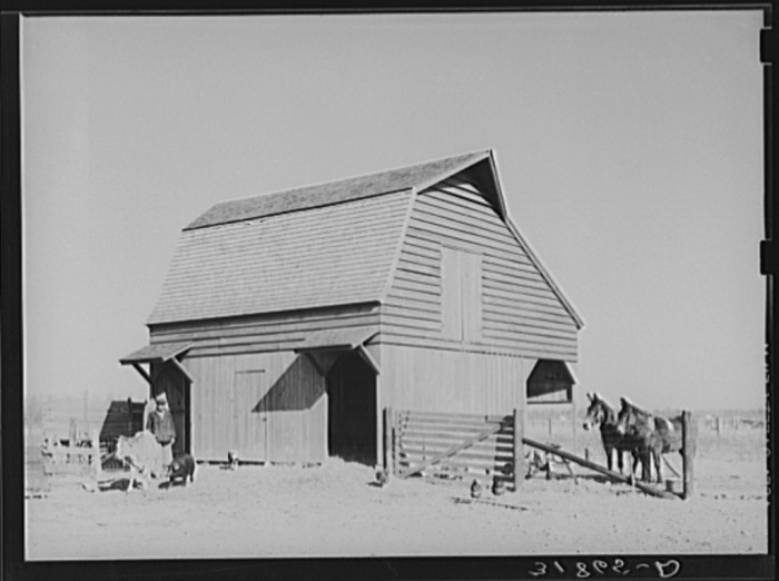 10. Barn with Farmer & Livestock
