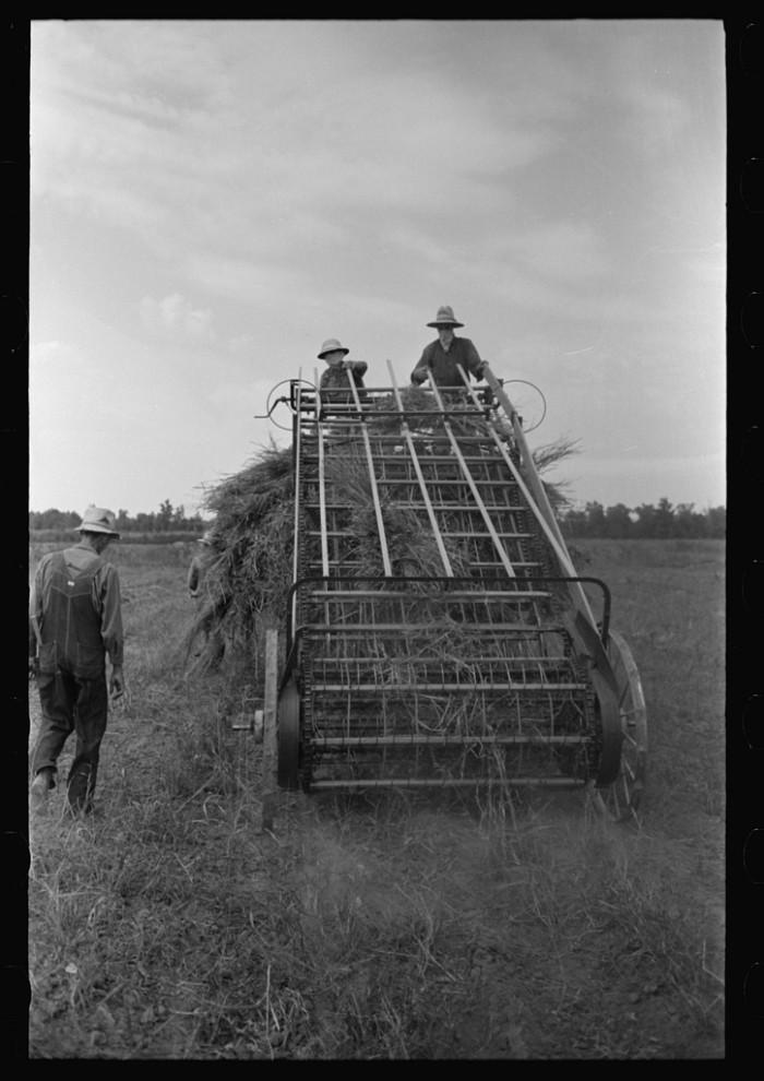 5. Hay Loading Machine