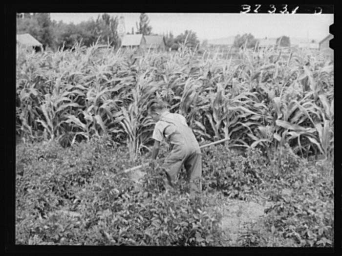 9. Snowville, August 1940