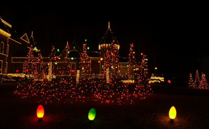 2. The house lights