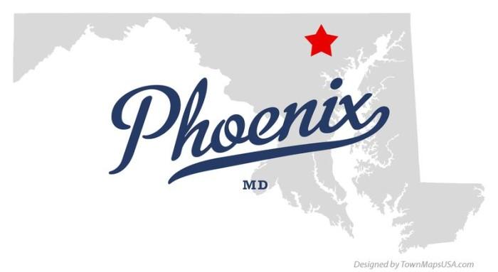 9) Phoenix