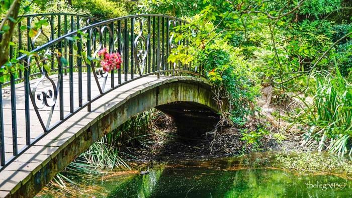 8. Mynelle Gardens, Jackson