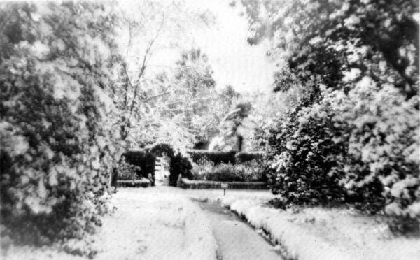 View of snow in the secret garden at Killearn Gardens (Maclay Gardens) State Park