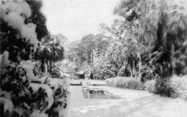 Snow around the reflecting pool at Killearn Garden (Maclay Gardens) State Park
