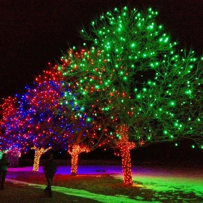 9. Trail of Lights (Littleton)