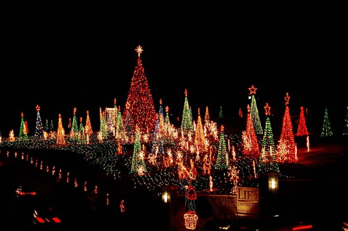 8. Lights of Life - Life University - Barclay Circle off Highway 41/Cobb Parkway Marietta, Georgia