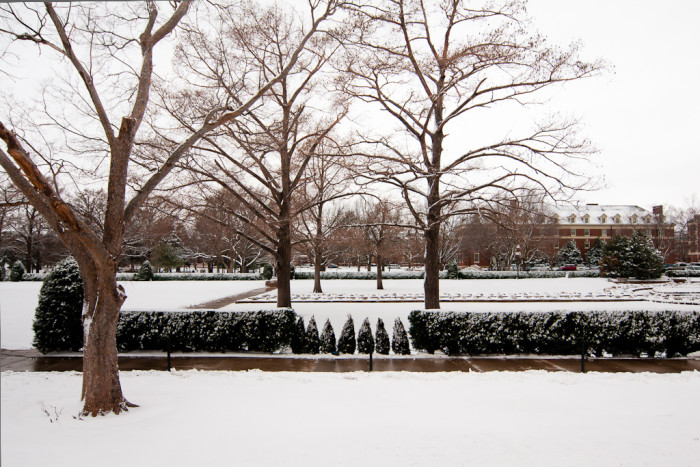 11. The snow-covered OSU campus looks beautiful.