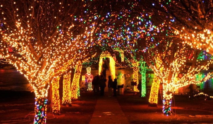 2. We have spectacular light shows.