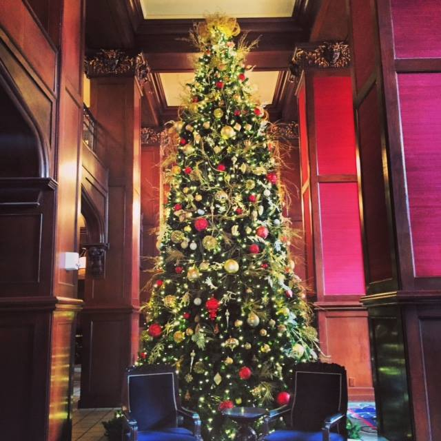 8. These beautiful Christmas trees decorate our Oklahoma homes and businesses.