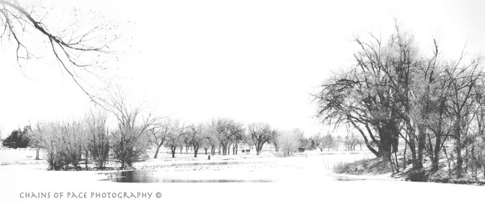 7. A winter wonderland in the Oklahoma Panhandle.