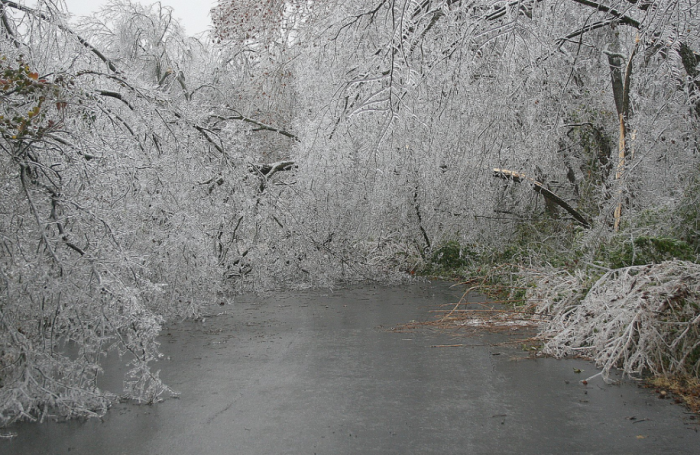 5. A freakish ice storm could paralyze the state.