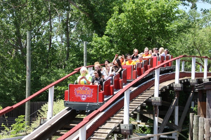 6. Or experience the thrill of a roller coaster.
