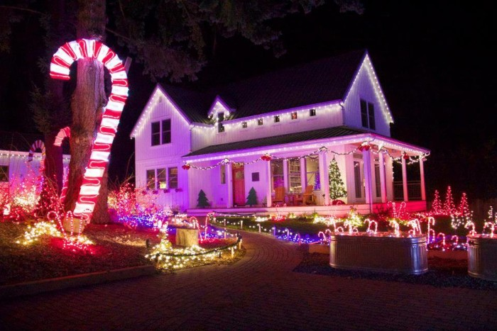 5. Oly Lightstravaganza, Olympia