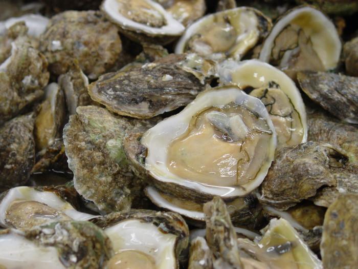 oyster-roast2