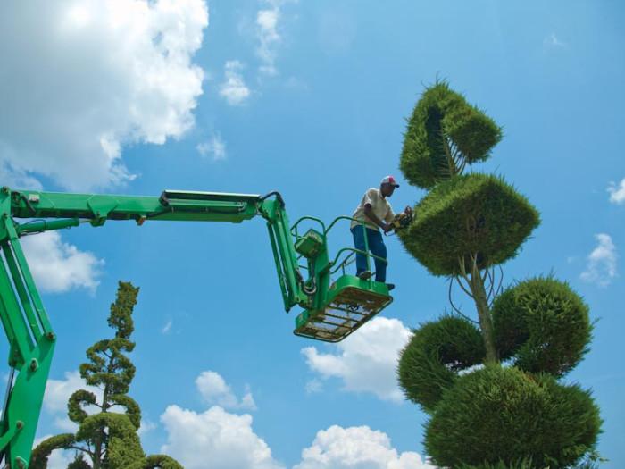 4. Pearl Fryar's Topiary Garden - Bishopville, SC