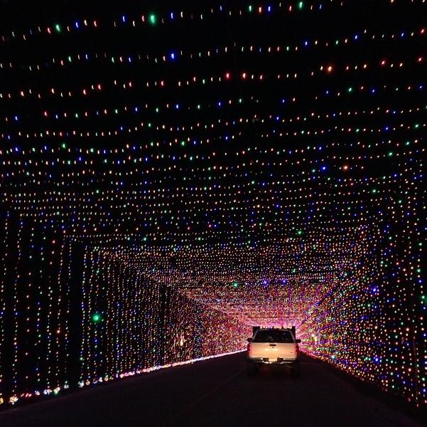 7. Prairie Lights (Grand Prairie)