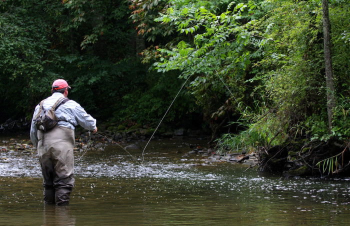 6. Rivers and lakes to fish in.