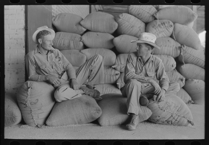 15.Farmers sitting on bags of rice, state mill, Abbeville, Louisiana
