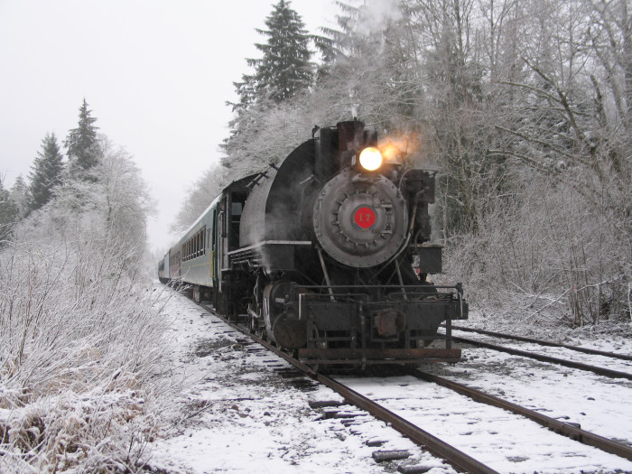 15. December: Catch a scenic winter train, like the Santa Express.