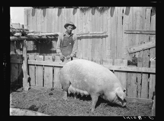 13. Sanpete County, 1940