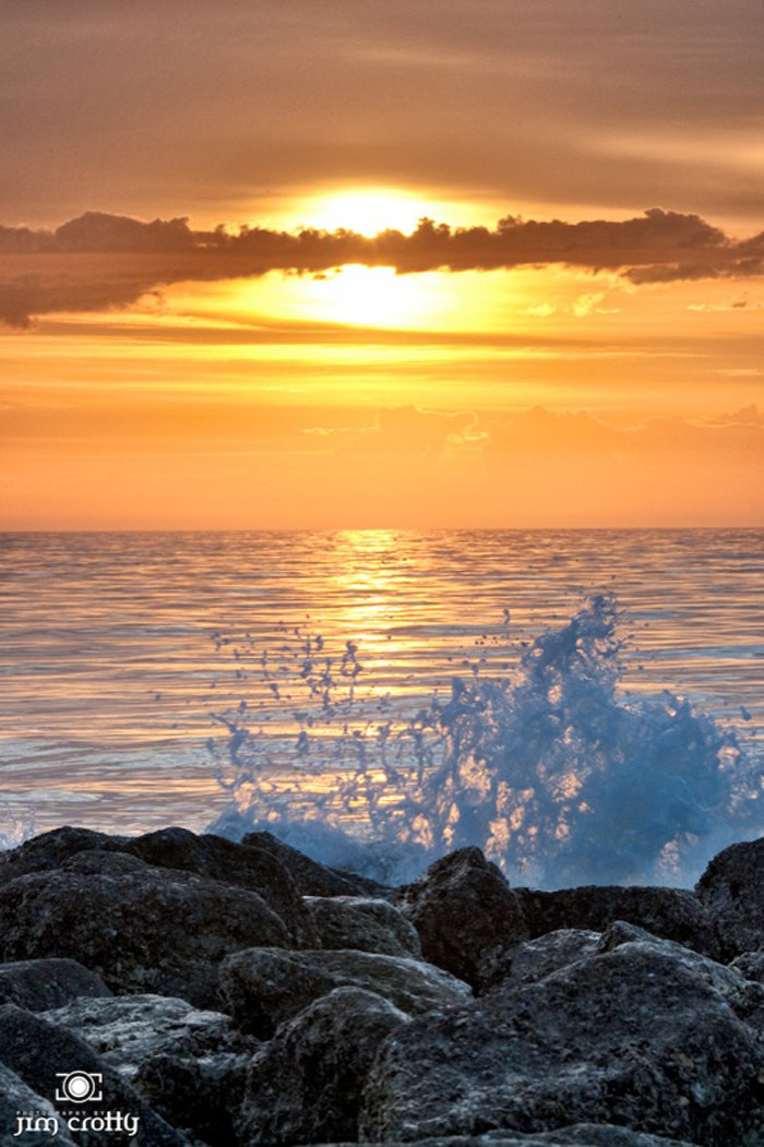 12. See all of South Carolina's 43 State Parks. We're blessed in the Palmetto State with State Parks that are on the ocean...