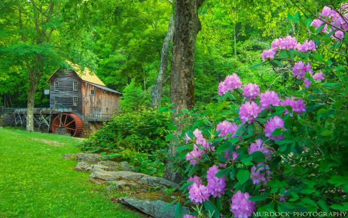 15. This spring shot at Glade Creek Grist Mill