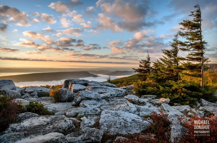 11. This majestic shot of Dolly Sods