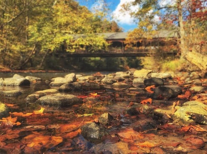 4. The Mohican River and covered bridge at Mohican State Park