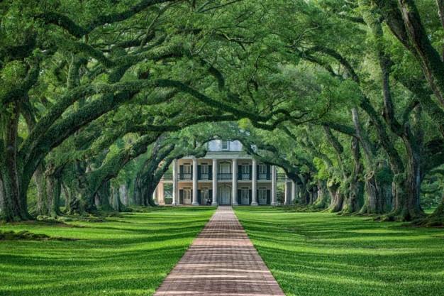 Louisiana: Oak Alley Plantation