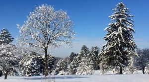 Here Are 12 Spots In Illinois You Must Explore This Winter