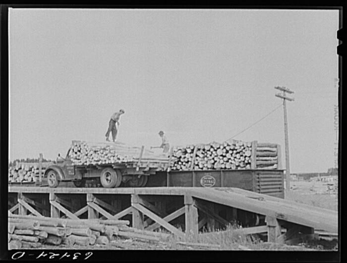 5. These men load pulpwood onto railroad cars in Springbrook in 1941.