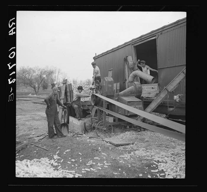 9. Men shell corn into a car in Newton in 1937.