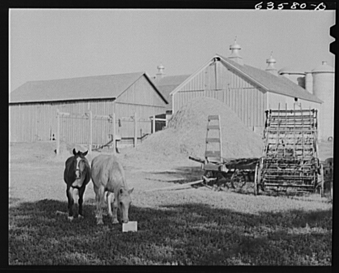 9. This is a shot of a small farm in Shawano County around 1941.
